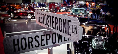 Everything you always wanted to know about testosterone but were afraid to ask !